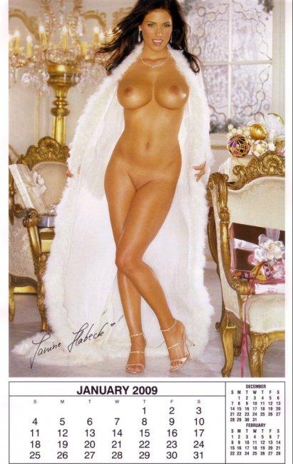 Playboy Playmate Calendar 2009 (13 фото)