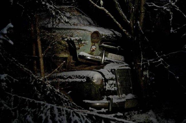 Ночью на свалке (23 фото)