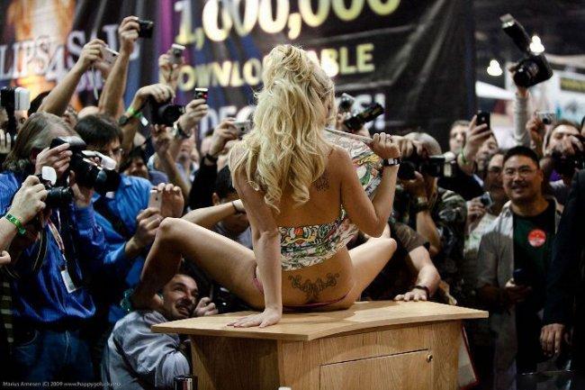 Порно-оскар AVN 2009 (31 фото)
