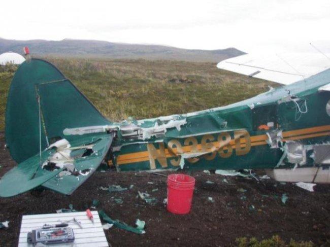 Медведь напал на самолет (6 фото)