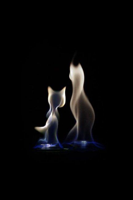 Шикарные фотографии огня (11 фото)