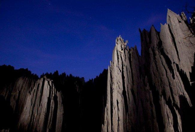 Каменный лес на Мадагаскаре (14 фото)
